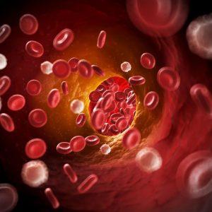 Recomandari de remedii naturiste pentru colesterol marit
